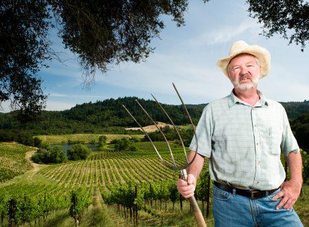 Sustainable – Il futuro del cibo in America
