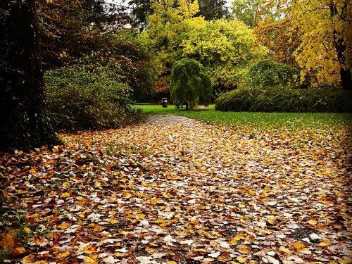 """""""È autunno, riposate."""""""